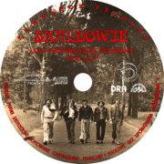 label CD splaszczony